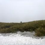 ガスにやられて雪渓間違え藪漕ぎ。これもまた春スキー。