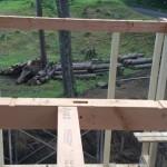 奥の木までデッキ出してツリーハウス作りたい